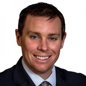 Dr David Nelles